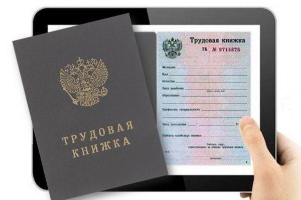 elektronnaya_trudovaya